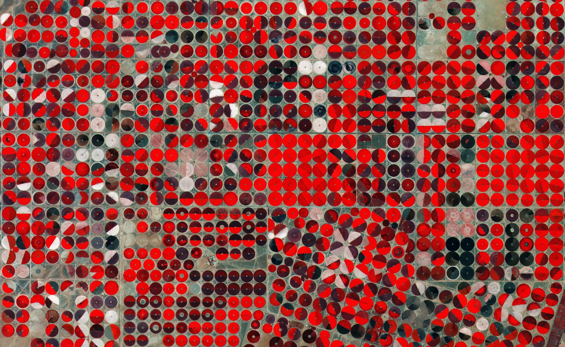 Agriculture - irrigation - Satellite - Pivot Central - Arabie Saoudite - Turbajal - Proche infrarouge - Sentinel-2 - Copernicus - ESA - Cercles parfaits - Parcelles agricoles - Europe