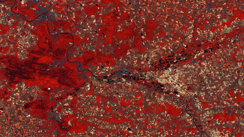 La région parisienne vue par satellite - Ile de France - Sentinel-2 - Agriculture - Seine - Marne - Copernicus - Parcelles agricoles - Maturation et sénescence - Végétation - Fausses couleurs - ESA - Copernicus