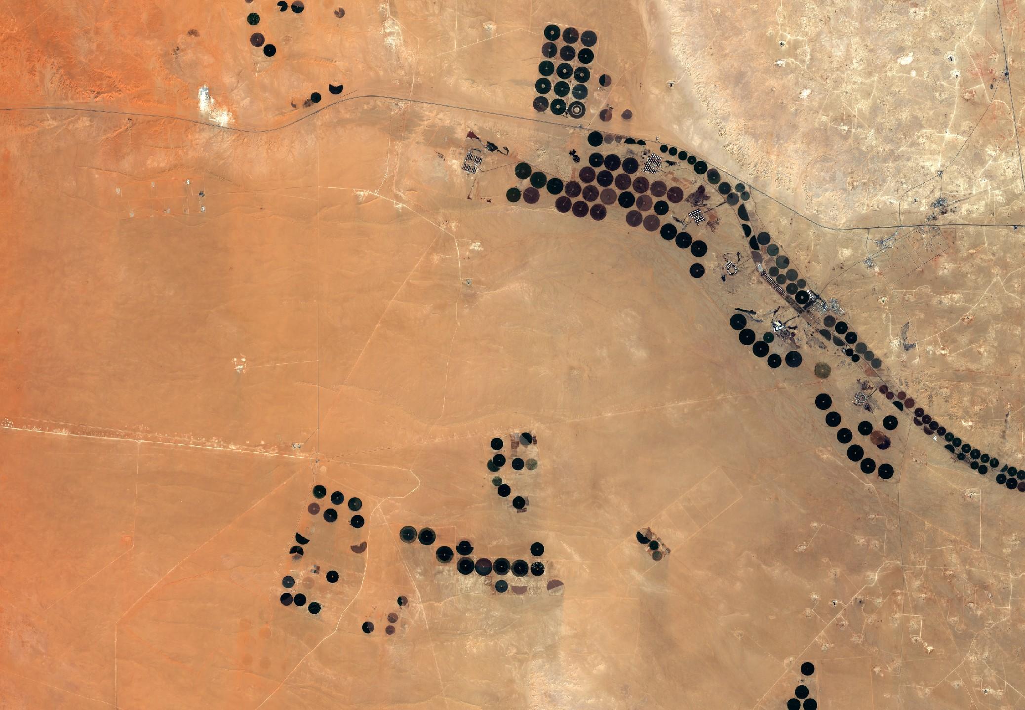 Arabie Saoudite - Agriculture - irrigation - désert - Sentinel-2A - Décembre 2016 - ESA - Copernicus - Commission européenne
