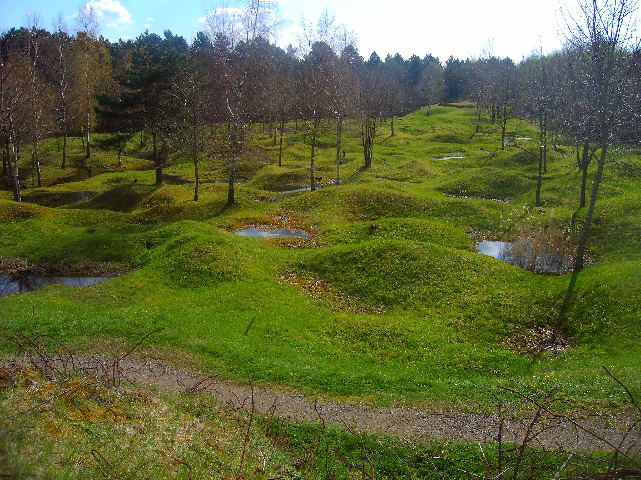 Bataille de Verdun - Commémoration - Mai 2016 - Champ de bataille - Zone rouge - Forêt d'exception - Trous d'obus - Douaumont-