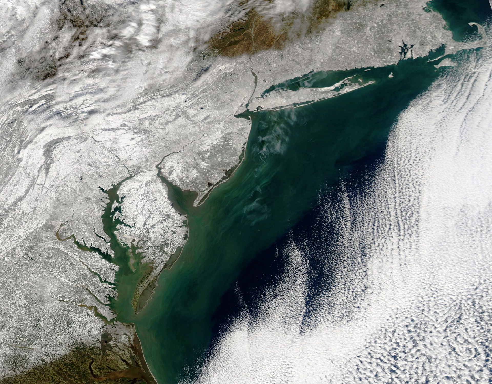 Snowzilla - Tempête de neige - New York - Washington - Côte est - Aqua - MODIS - NASA