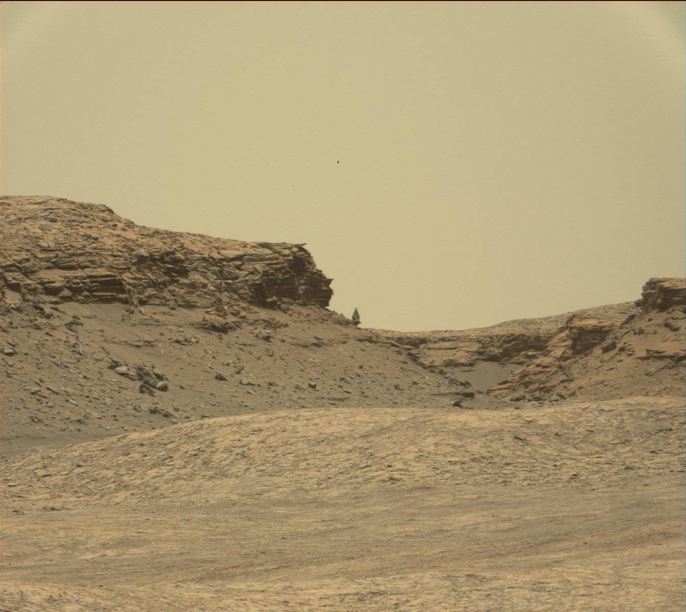 MSL - Curiosity - Safe mode - Mode survie - Juillet 2016 - Mars - JPL - NASA - panne - Mastcam - panorama - Murray buttes