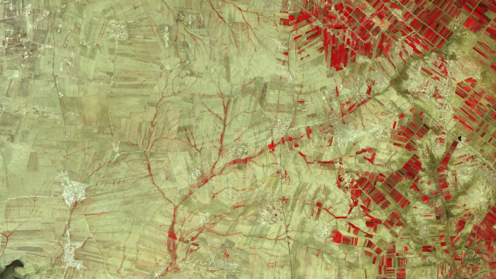 Jour de la Terre - Journée de la Terre - 22 avril 2016 - Arbre - Environnement - Quiz - image satellite - satellite d'observation - Sentinel - Copernicus - ESA