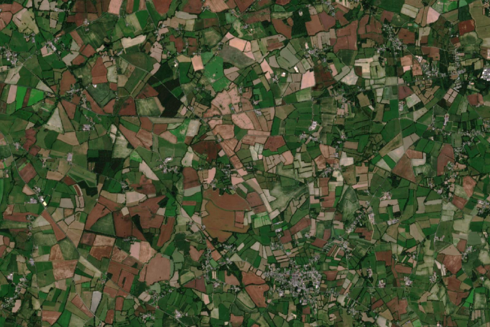 Quiz image - Satellites et environnement - Observation de la Terre - Agriculture - Remote sensing - Un autre regard sur la Terre - Juillet