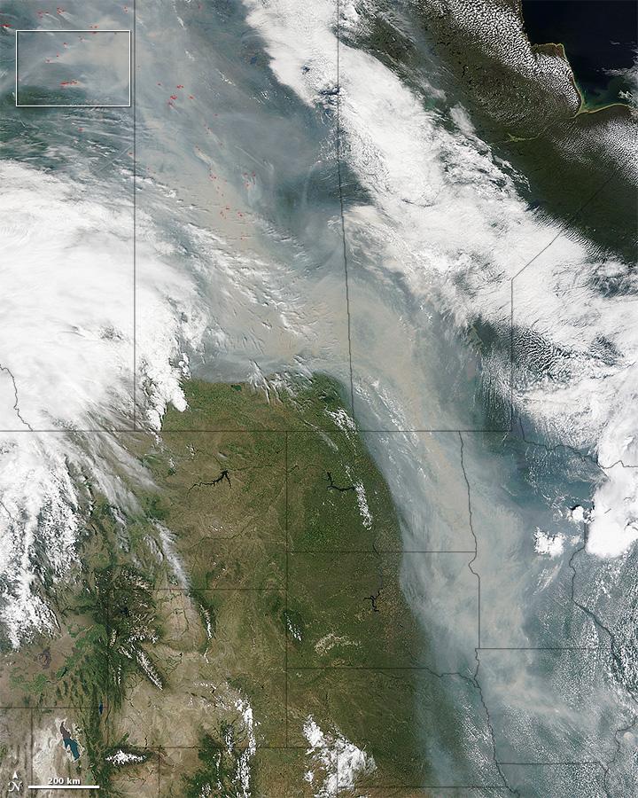 Incendie - Canada - Nuage de fumée au dessus des USA - Satellite - Terra - MODIS - Wild fires - Limites des états
