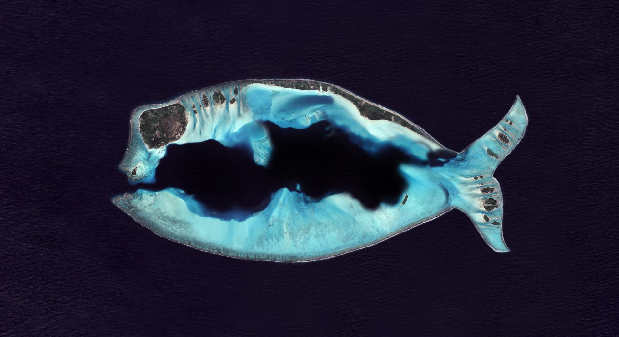 Premier avril - Poisson d'avril - April's fool - île mystérieuse - île en forme de poisson - CNES - Un autre regard sur la Terre